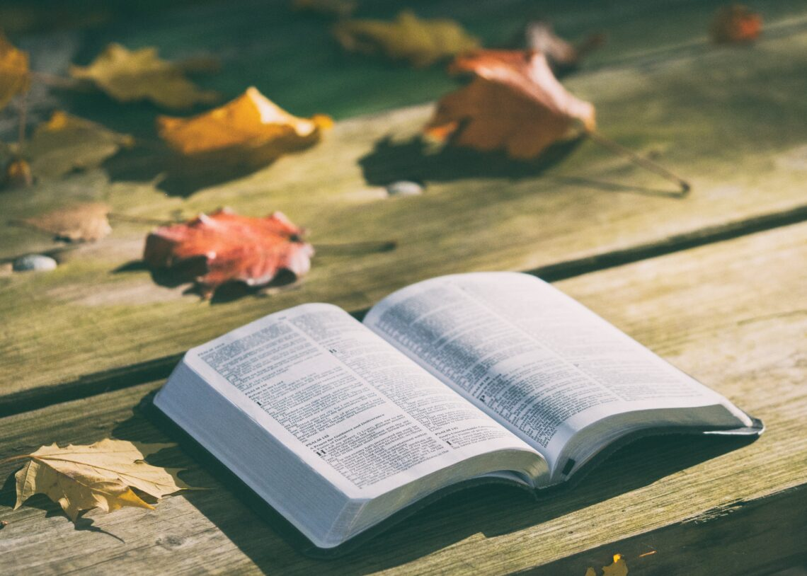 Biblen Bibelen Bog Jesus Livet